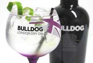 Bulldog Gin y Gatos